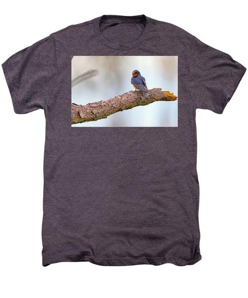 Barn Swallow On Assateague Island Men's Premium T-Shirt
