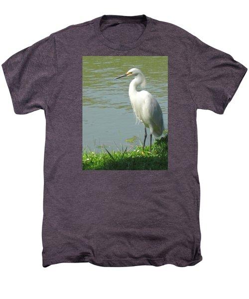 Bird Men's Premium T-Shirt by Sandy Taylor