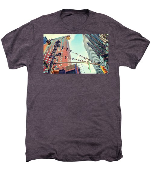 Birds In New York City Men's Premium T-Shirt