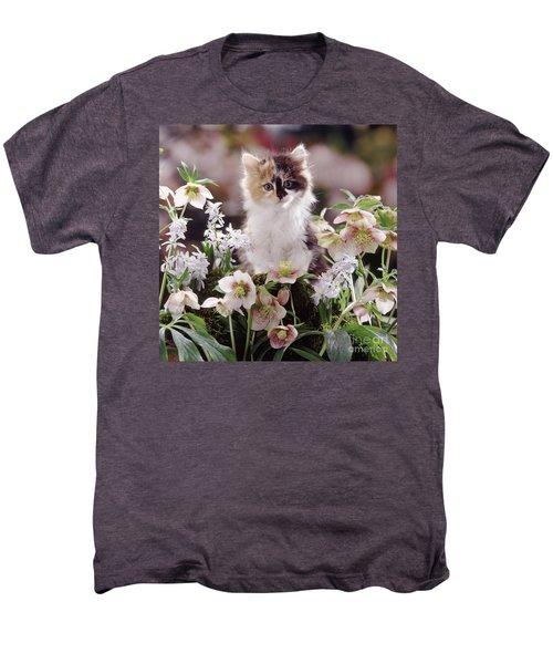Calico And Scillas Men's Premium T-Shirt