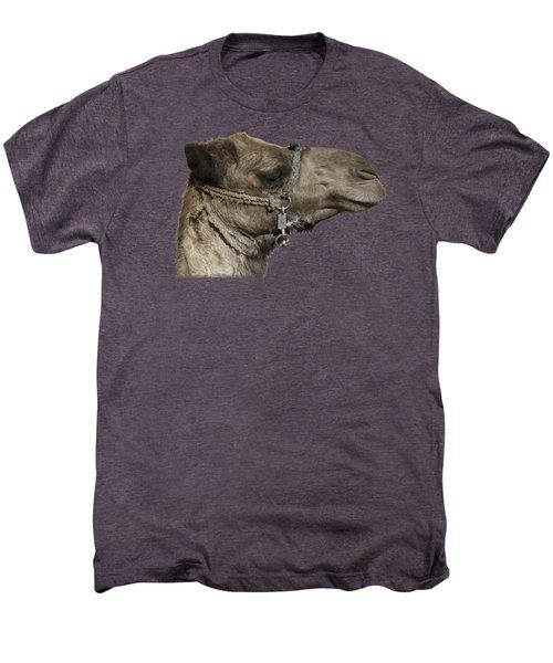 Camel's Head Men's Premium T-Shirt by Roy Pedersen