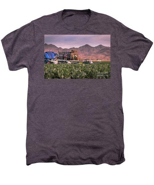Cauliflower Harvest Men's Premium T-Shirt by Robert Bales