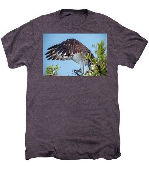 Daddy Osprey On Guard Men's Premium T-Shirt
