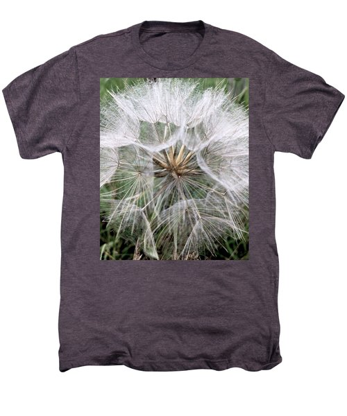 Dandelion Seed Head  Men's Premium T-Shirt by Kathy Spall
