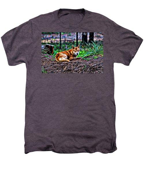 Dingo From Ozz Men's Premium T-Shirt by Miroslava Jurcik