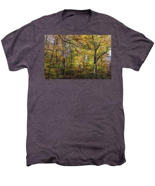 Fall Colors Of Rock Creek Park Men's Premium T-Shirt