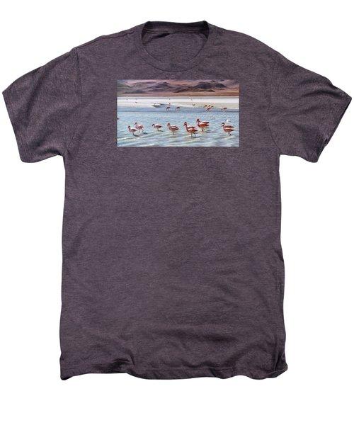 Flamingos Men's Premium T-Shirt by Sandy Taylor