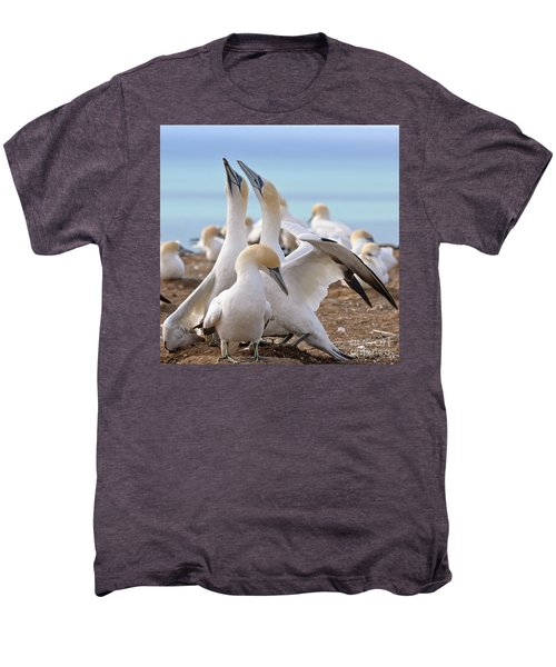 Men's Premium T-Shirt featuring the photograph Gannets by Werner Padarin