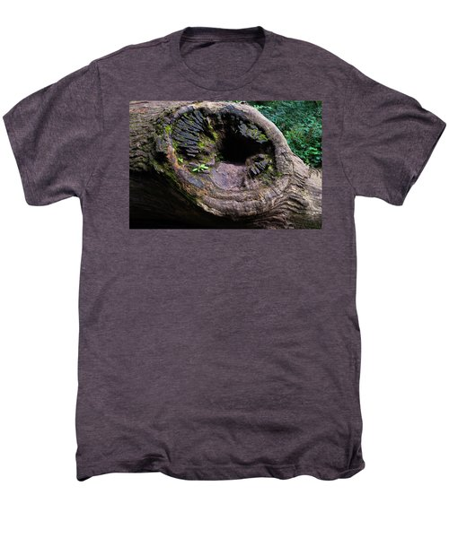 Giant Knot In Tree Men's Premium T-Shirt