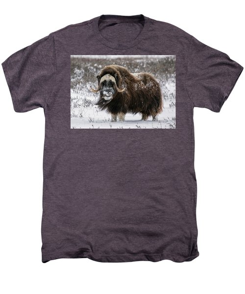 Here's Looking At You Men's Premium T-Shirt