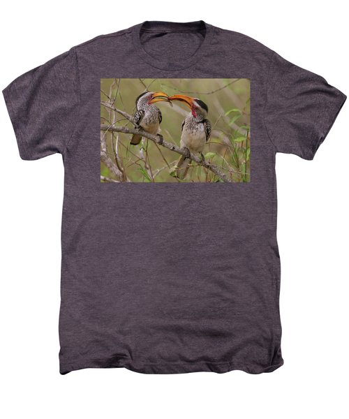 Hornbill Love Men's Premium T-Shirt by Bruce J Robinson