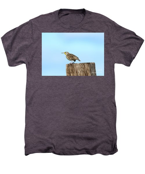 Meadowlark Roost Men's Premium T-Shirt by Mike Dawson