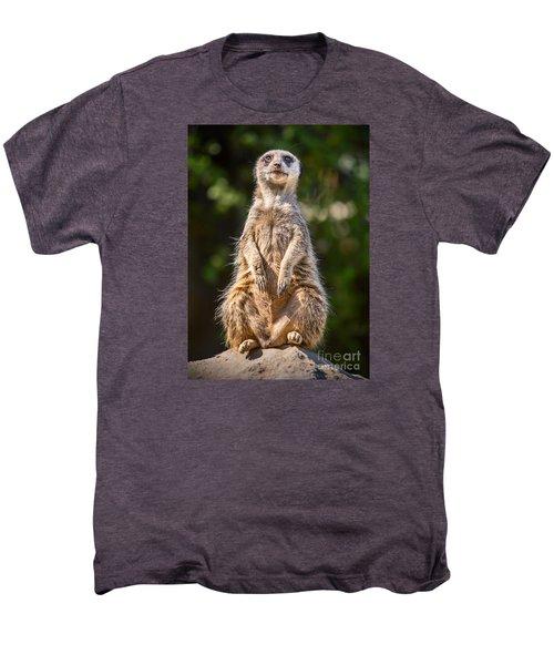 Morning Sun Men's Premium T-Shirt by Jamie Pham