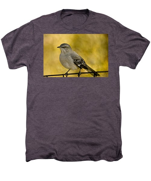 Northern Mockingbird Men's Premium T-Shirt by Chris Lord