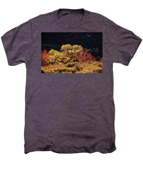 November In Arizona Men's Premium T-Shirt