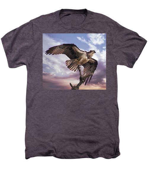 Osprey Wing Men's Premium T-Shirt