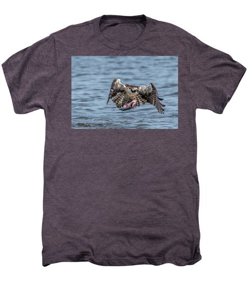 Osprey With Catch 9108 Men's Premium T-Shirt