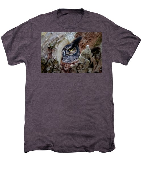 Peek A Boo Owl Men's Premium T-Shirt