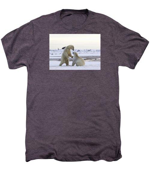Polar Bear Play-fighting Men's Premium T-Shirt