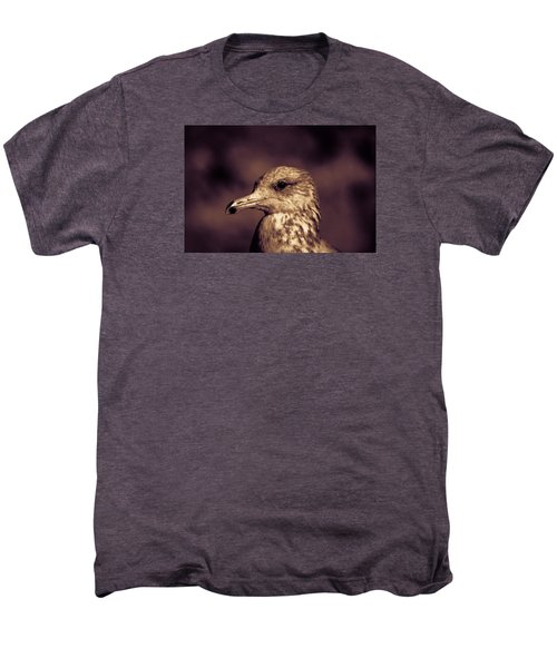 Portrait Of A Gull Men's Premium T-Shirt by Lora Lee Chapman