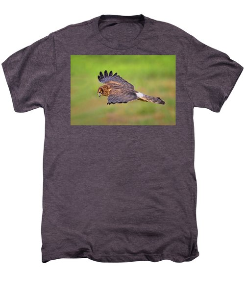 Prey Flyby Men's Premium T-Shirt