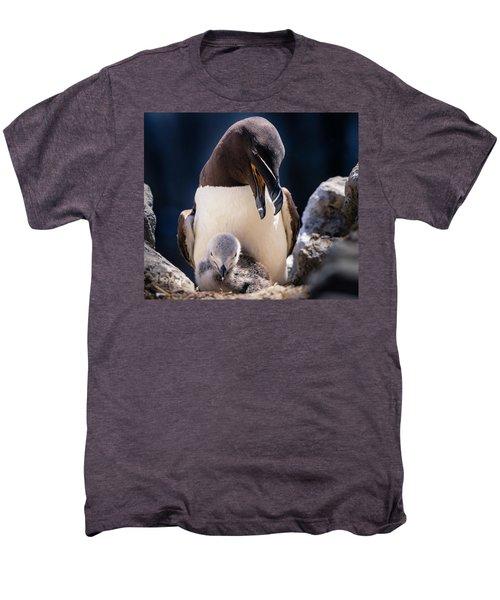 Razorbill With Chick, Farne Islands Men's Premium T-Shirt