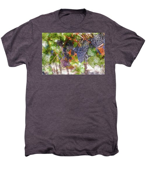Red Wine Grapes On The Vine In Wine Country Men's Premium T-Shirt