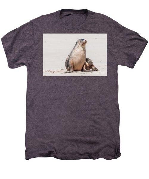 Sea Lion 1 Men's Premium T-Shirt by Werner Padarin