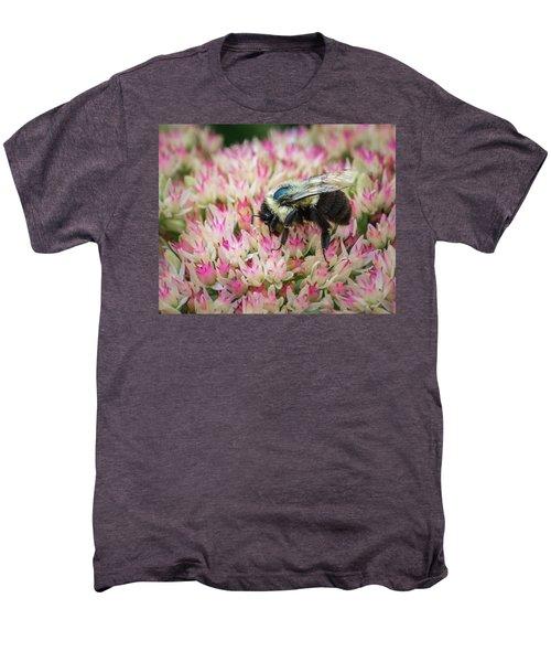 Men's Premium T-Shirt featuring the photograph Sedum Bumbler by Bill Pevlor