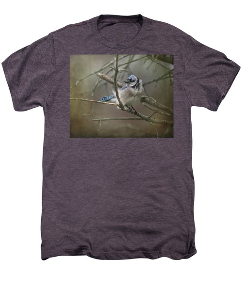 Shelter From The Wind Men's Premium T-Shirt