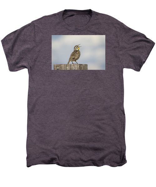 Singing A Song Men's Premium T-Shirt by Thomas Young