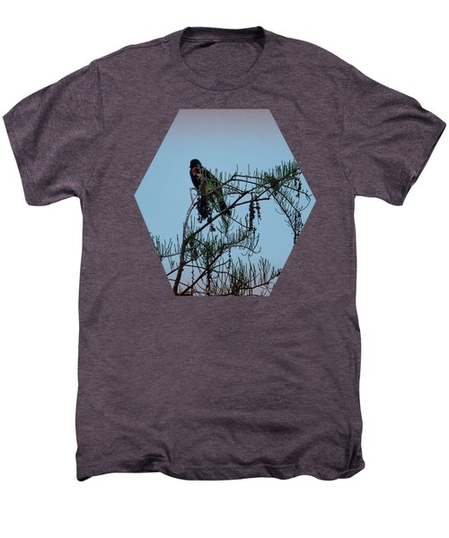 Stillness Men's Premium T-Shirt by Jim Hill