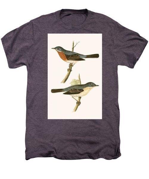 Sub Alpine Warbler Men's Premium T-Shirt by English School