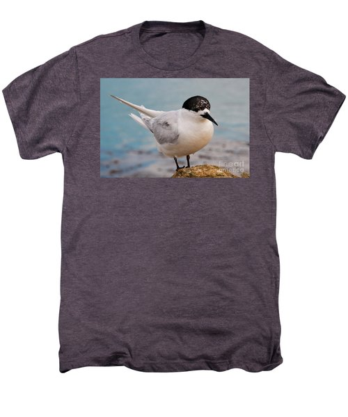 Men's Premium T-Shirt featuring the photograph Tern 1 by Werner Padarin