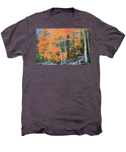 Men's Premium T-Shirt featuring the photograph Twisted Pine by David Chandler