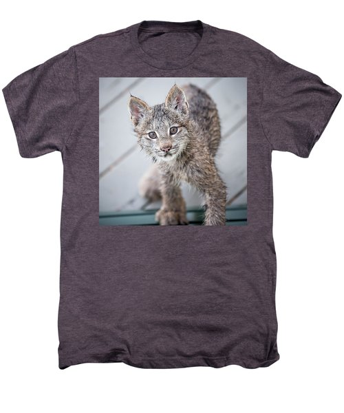 What Are You Men's Premium T-Shirt
