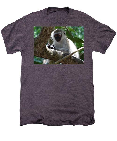 White Monkey In A Tree 4 Men's Premium T-Shirt