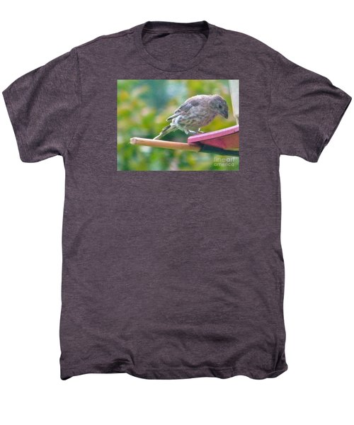 Young Crossbill Female  August  Indiana Men's Premium T-Shirt by Rory Cubel