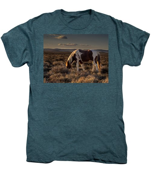 Evening Solitude In Sand Wash Basin Men's Premium T-Shirt