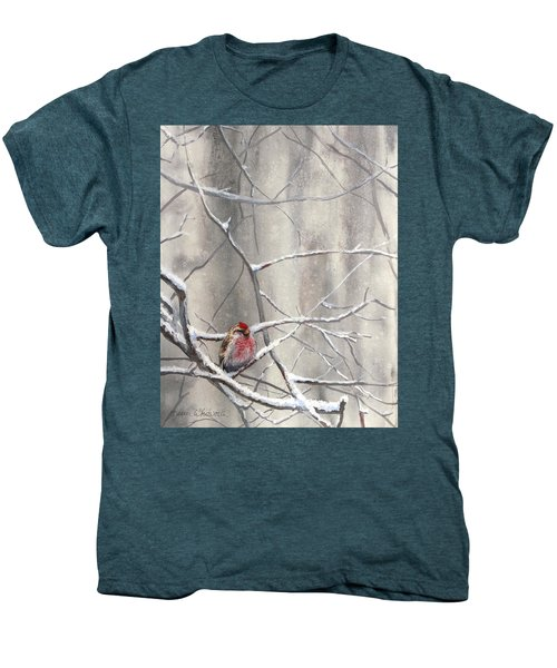 Eyeing The Feeder Alaskan Redpoll In Winter Men's Premium T-Shirt