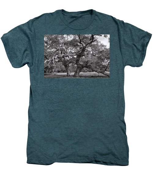Gnarly Tree  Men's Premium T-Shirt