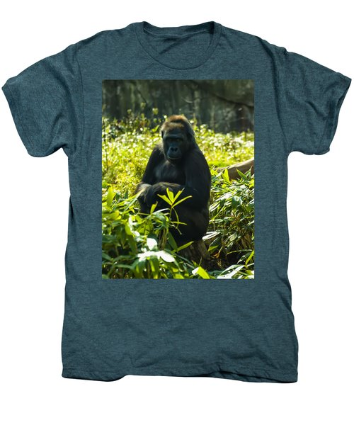Gorilla Sitting On A Stump Men's Premium T-Shirt