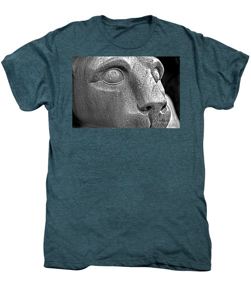 Heinz Warneke's Mountain Lion Men's Premium T-Shirt