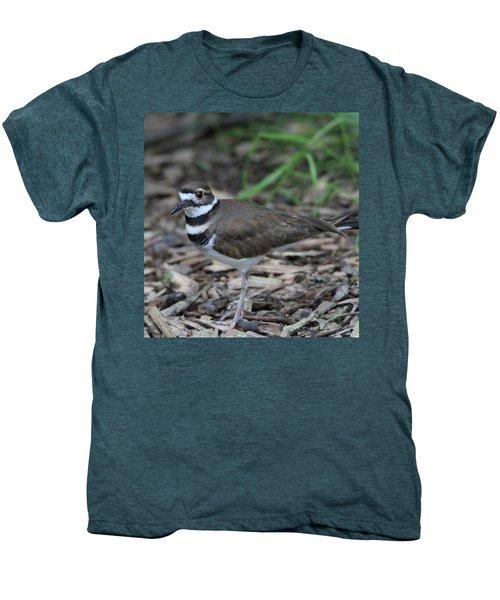 Killdeer Men's Premium T-Shirt by Dan Sproul