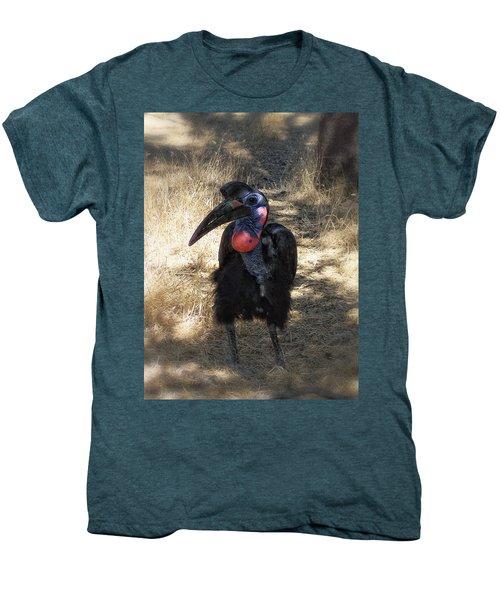 Ugly Bird Ball Men's Premium T-Shirt by Donna Blackhall