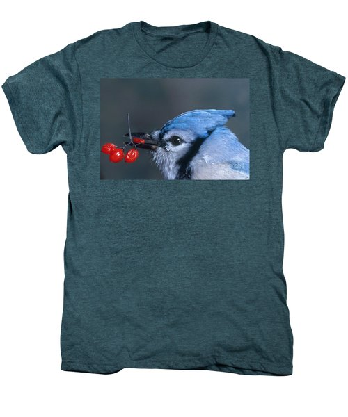 Blue Jay Men's Premium T-Shirt by Photo Researchers, Inc.