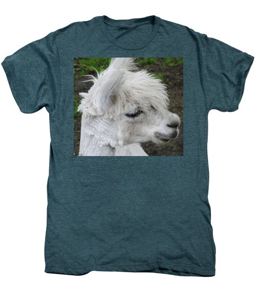 Baby Llama Men's Premium T-Shirt by Ellen Henneke