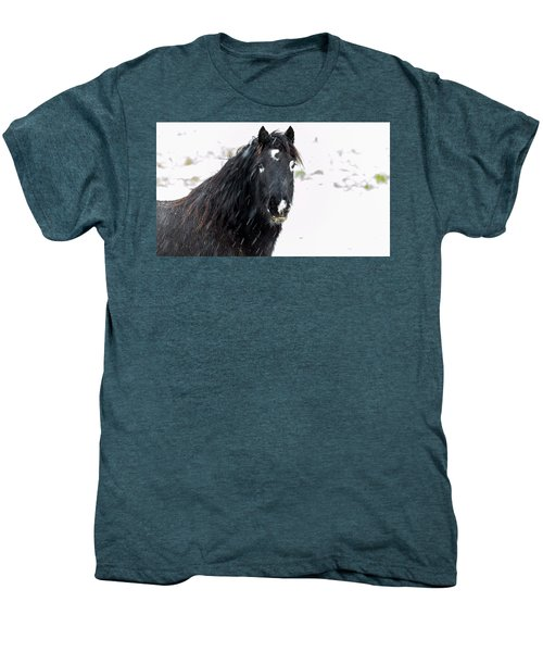 Black Horse Staring In The Snow Men's Premium T-Shirt