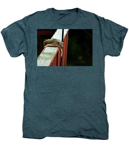 Resting Squirrel Men's Premium T-Shirt