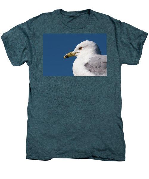 Ring-billed Gull Portrait Men's Premium T-Shirt